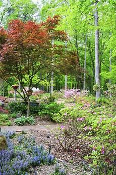tips gardening in zone 7 garden tips for zone 7 regions
