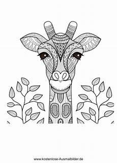 Ausmalbilder Erwachsene Giraffe Malvorlagen Giraffe Pdf Kinder Zeichnen Und Ausmalen