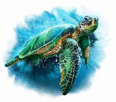 green sea turtle by kajenna