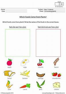 plants and animals worksheets for grade 4 13508 40 best images about science printable worksheets primaryleap on comprehension