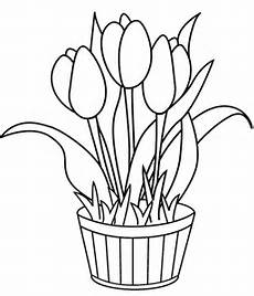 tulip coloring pages free printable coloring pages for