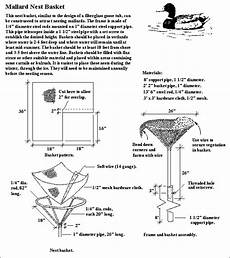 mallard duck house plans plans to build a mallard bird house ideas to build a