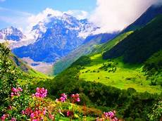 Flower Valley Wallpaper by The Valley Of Flowers Uttarakhand Mountains Nature