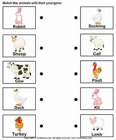 animals and their worksheets 14100 and print turtle diary s farm animals and their babies worksheet our large collectio