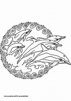 Ausmalbilder Meerjungfrau Mit Delfin Ausmalbilder Meerjungfrau Mit Delfin Einzigartig