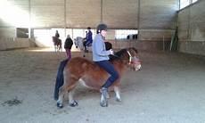 ffe trouver un cheval centre equestre de la brasserie tous 224 cheval