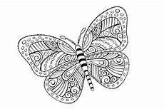 Ausmalbilder Erwachsene Schmetterling Bilder Und Suchen Malbild