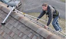 Do It Yourself Bat Removal You Want To Give It A Try