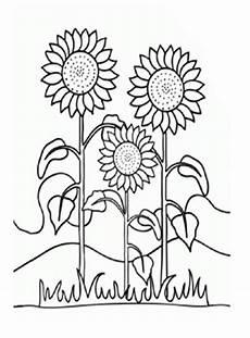 Malvorlagen Sonnenblumen Ausdrucken Ausmalbilder Sonnenblumen 1 Blumen Malvorlagen Ausmalen