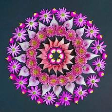 beautiful mandalas made from flowers by kathy klein - Mandala Blumen