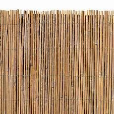 Gartenzaun Billig Kaufen - bambusmatte sichtschutzzaun sichtschutz 100 cm x 5 m