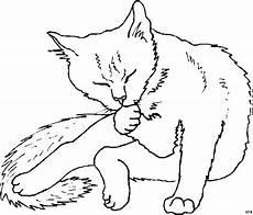 Malvorlagen Kostenlos Tiere Katzen Katze Putzt Sich Ausmalbild Malvorlage Tiere