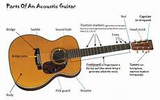 Best Beginner Acoustic Guitars For All Budgets Baloo Blues