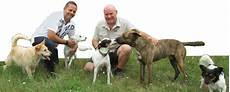 Hundeherum Benefizveranstaltung Hundeschweigers Jimdo