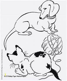 Malvorlagen Tiger Motor Coloring Pages Of White Tigers Divyajanani Org