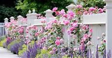 Was Kostet Eine Gartengestaltung - gartengestaltung 25 moderne ideen bilder beispiele