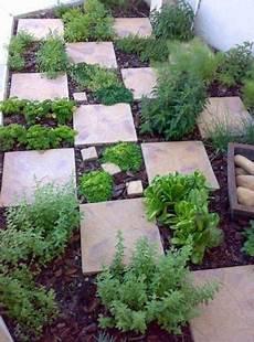 Pemanfaatan Ruang Membuat Taman Mungil Belakang Rumah