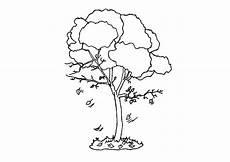 Malvorlage Herbst Baum Malvorlage Baum Im Herbst Kostenlose Ausmalbilder Zum