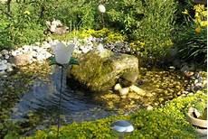 Algen Im Gartenteich Bek 228 Mpfen Mein Sch 246 Ner Garten