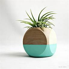 vase en bois design the top trends in modern air plant containers