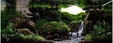 10 Aquascape Waterfall Yang Unik Dan Menawan Dunia Akuarium