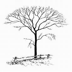 Malvorlage Baum Hochzeit Malvorlage Baum Mit 228 Sten Vorlagen Zum Ausmalen Gratis