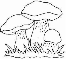 pilze zum ausmalen und ausdrucken ausmalen malvorlagen