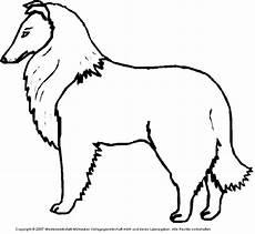 Ausmalbilder Hunde Border Collie Collie Medienwerkstatt Wissen 169 2006 2017 Medienwerkstatt