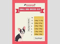 Puppy Growth Chart by Month & Breed Size with FAQ   All