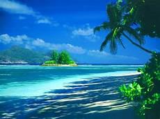 tropical island backgrounds wallpapersafari