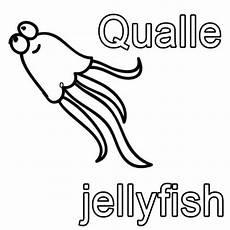 kostenlose malvorlage englisch lernen qualle jellyfish