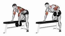 übungen ohne geräte ᐅᐅ tipp trapezmuskel trainieren 2 220 bungen ohne ger 228 te