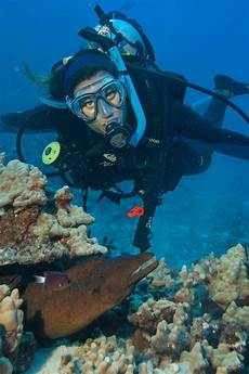 best features of diving in hawaii
