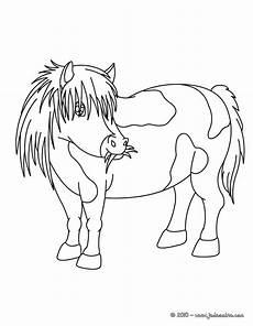 top23 poney dessin dessin lesgenissesdanslmais