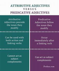 difference between attributive and predicative adjectives learn english grammar online