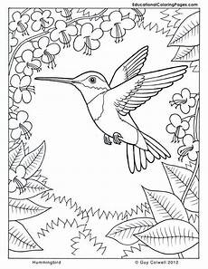nature coloring worksheets 15105 simple ideas coloring page nature nature coloring pages printable search birthdays bird