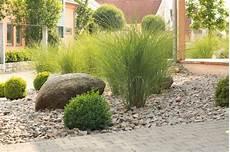 steingarten gräser winterhart steingartenideen modernes pflegeleichtes design