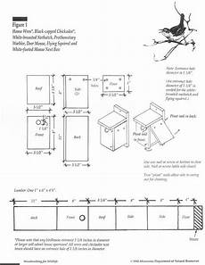 bird house plans for bluebirds pin by daniel generic on child projects with images