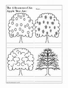 changing seasons worksheets 14779 the 4 seasons of an apple tree are worksheet for kindergarten 1st grade lesson planet