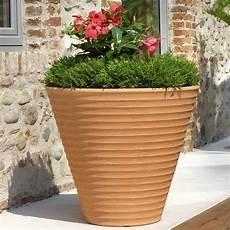 pot à fleurs pas cher amazing pots de fleurs en terre cuite pas chers 8 pot