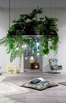 Home Decor Ideas Plants by Lush Plants Hanging Combined With Designer Pendant Lights
