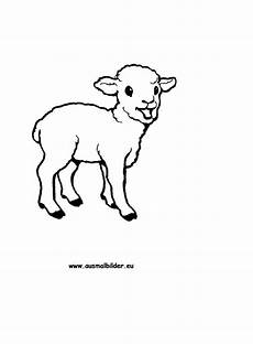 Ausmalbilder Ostern Lamm Ausmalbild Lamm Zum Ausdrucken
