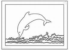 ausmalbilder delfin kostenlos malvorlagen zum ausdrucken