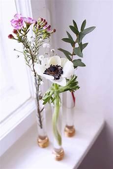reagenzglas vase basteln kreative diy idee