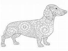 Hunde Ausmalbilder Dackel Dackel Ausmalbild Dackel Hunde Ausmalbild In 2019