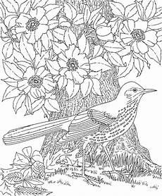 Malvorlage Erwachsene Blumen Malvorlage Blumen Ornamente Inspirierend Ausmalbilder