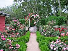 cottage garden design with roses wilson rose garden