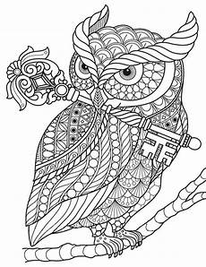 Malvorlagen Mandala Eulen Pin Auf Coloring