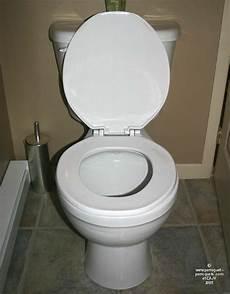 Les Salles De Toilette Les Cuvettes Et Les Perroquets