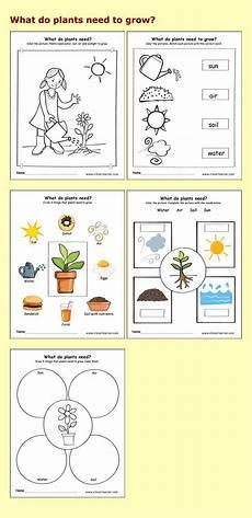 science plants worksheets for kindergarten 13582 24 best preschool science activity worksheet images on coloring book coloring